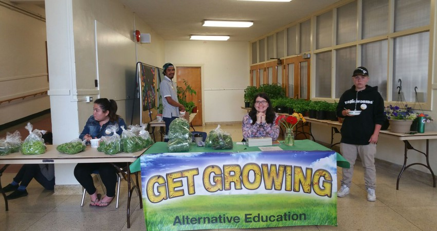 Our annual plant sale