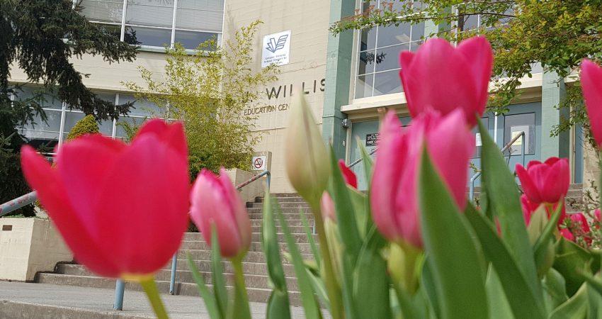 Spring at SJ Willis